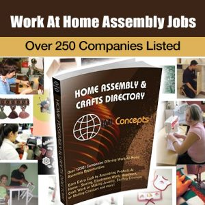 Assemble and Craft Jobs book cover